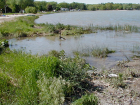 Stormwater Best Management Practices The Watershed