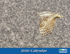 2016 Watershed Center Calendar