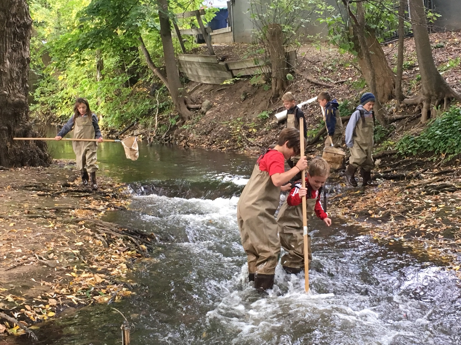 adopt a stream the watershed center grand traverse bay